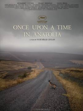 Once Upon A Time In Anatolia, New Turkish Cinema