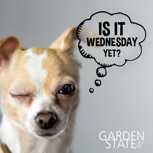 Dog-Friendly Wednesdays at GardenState
