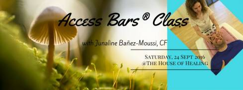 Access Bars Practitioner Certification Class