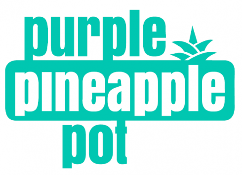 Purple Pineapple Pot